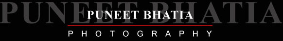 Logo Puneet Bhatia