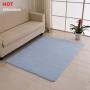 Coral velvet shaggy floor mat for living room